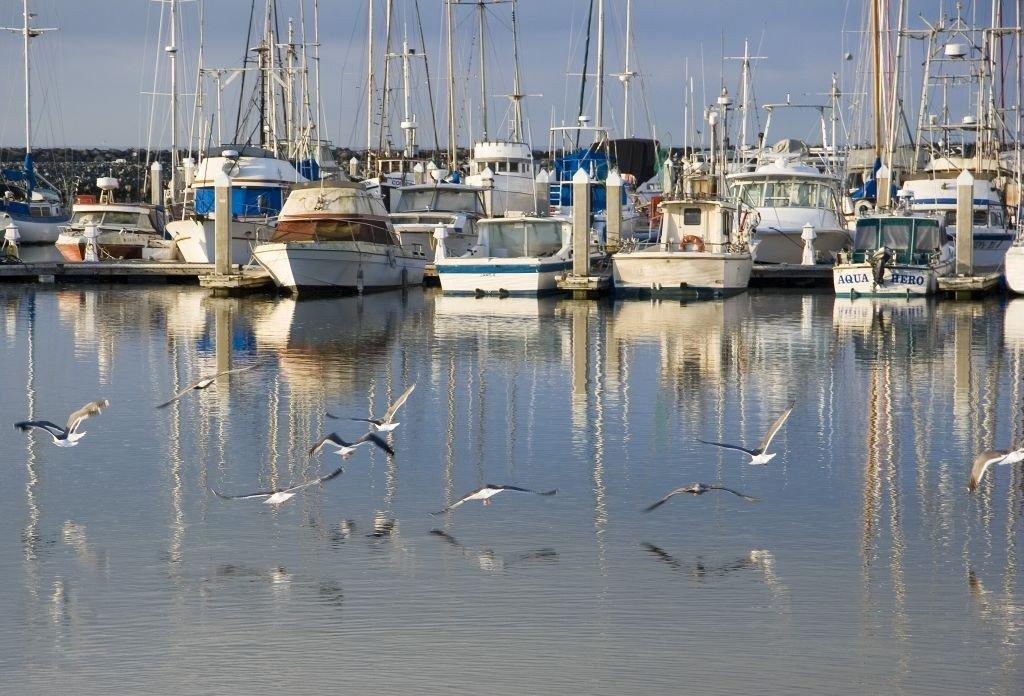 Half Moon Bay Fishing Tours