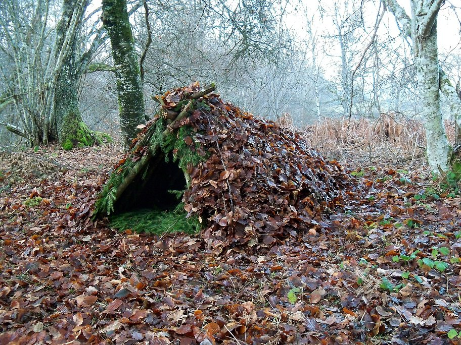 wales travel Bushcraft