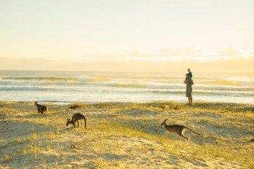Australia-Camping-PotatoPointEurobodalla-02022015-DeeKramer-317 - smaller - 1024 x 683