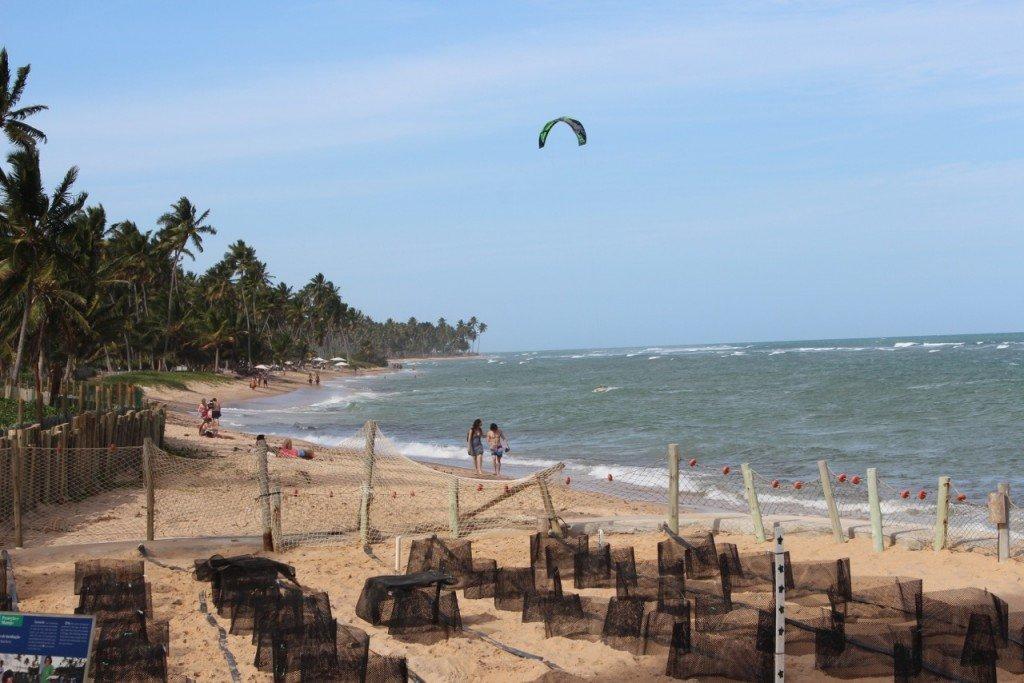 beach, Praia de Forte