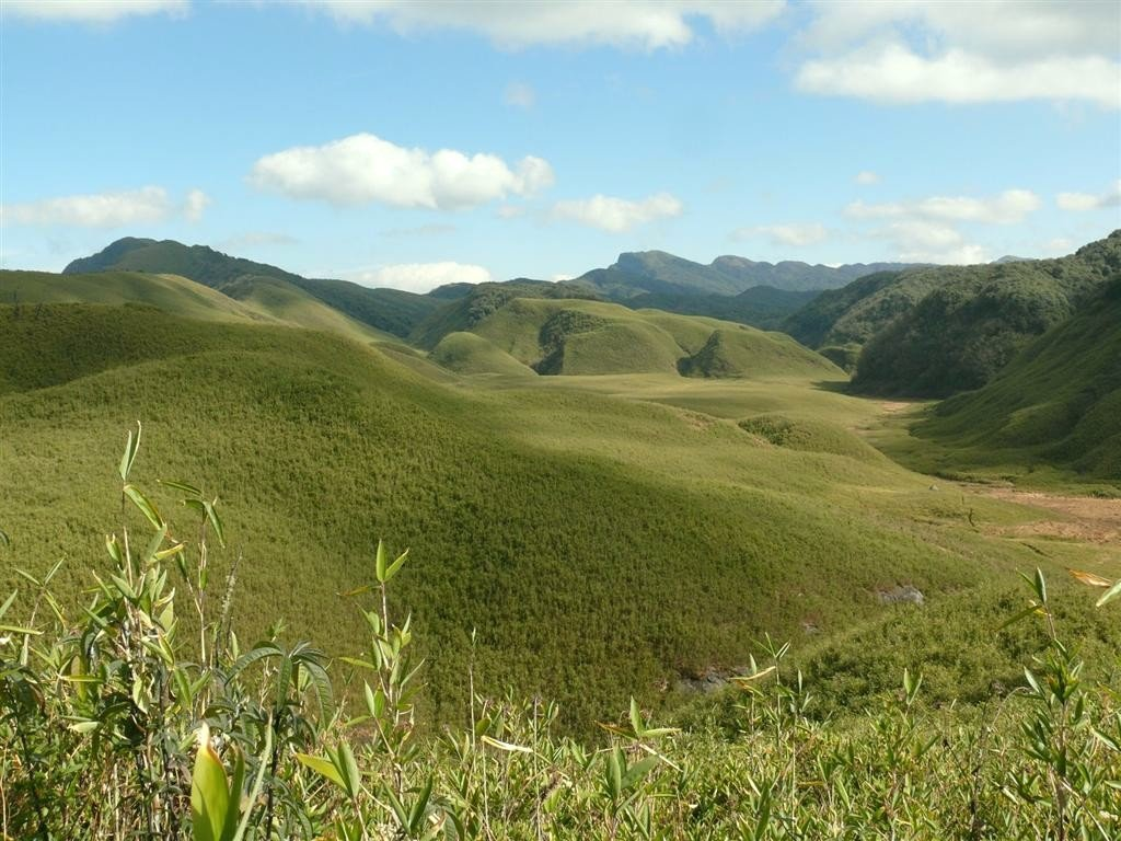 Photo: Mongyamba-CC 3.0 via Commons