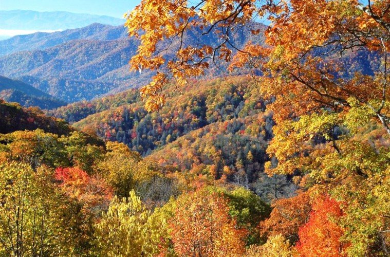 great smoky mountains coloring pages-#22