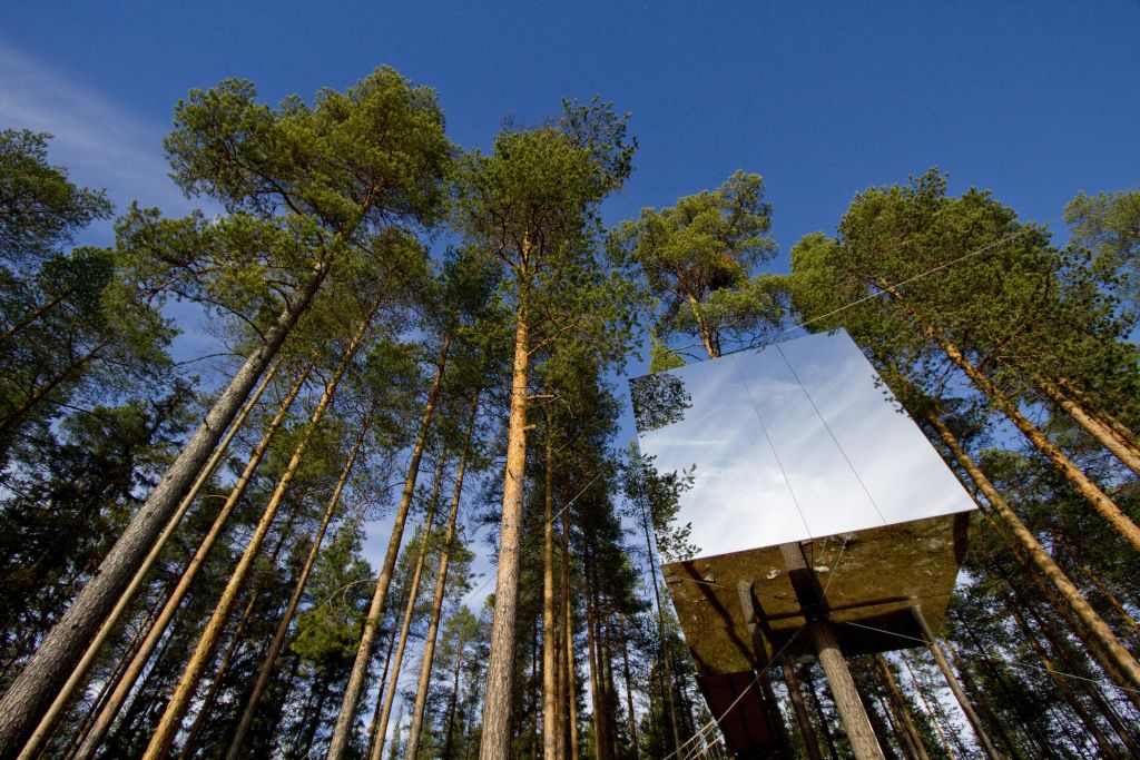 Live Your Fantasy At The Treehotel In Sweden - Ecophiles