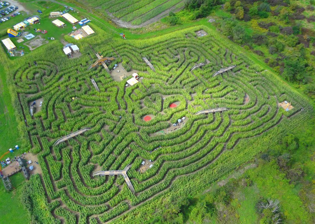 Corn Maze- Davis Farmland- MA tourism-CC 2.0 via Flickr - 1024 x 727
