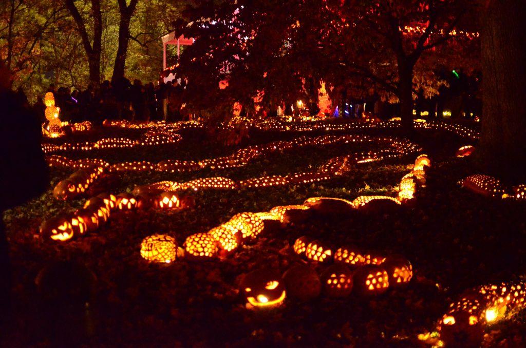 New York Hudson Historic Valley-Jack o Lantern Blaze-14 - 1024 x 678