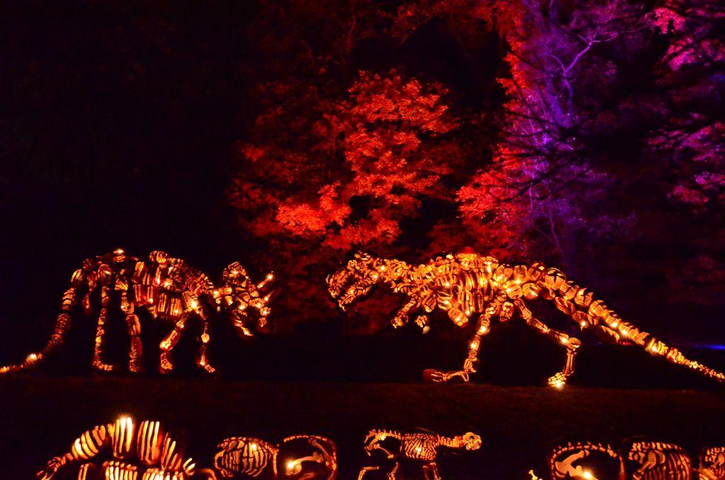 New York Hudson Historic Valley-Jack o Lantern Blaze-Dinosaurs - 1024 x 678