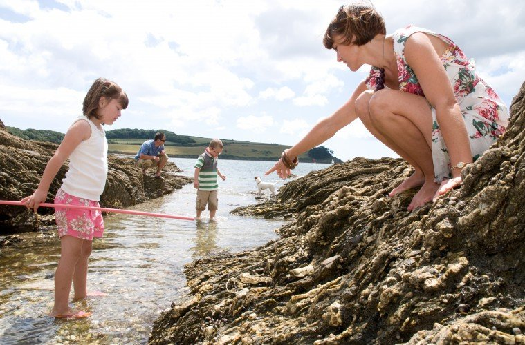 Rock Pooling in Cornwall