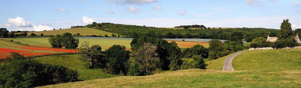 UK Cotswolds_Panorama_Fields