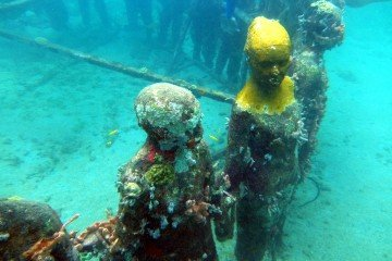 Best dive spots: Changing over time - the Ring of Children, Grenada