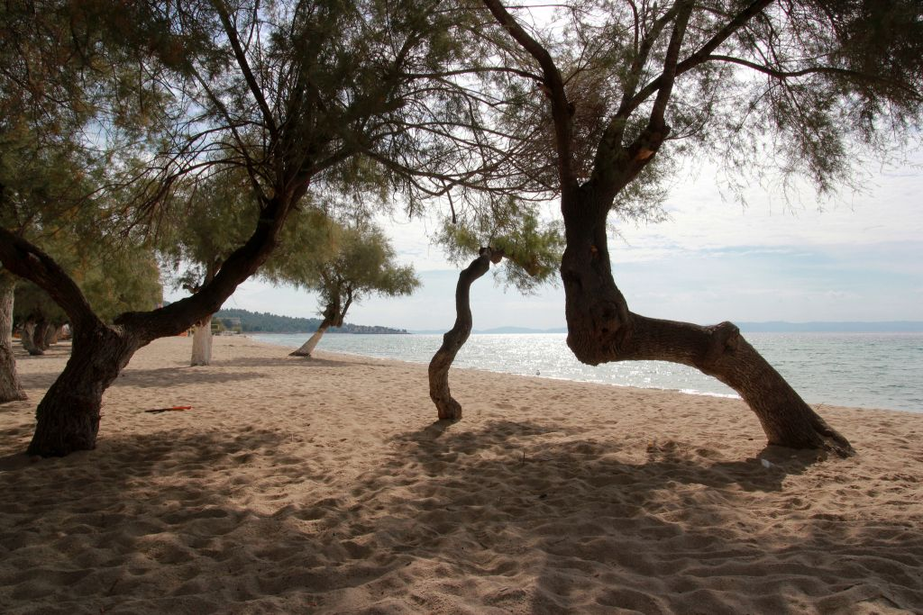 Greece-Strand beach-Chalkidiki-Marcus via Flickr - 1024 x 683