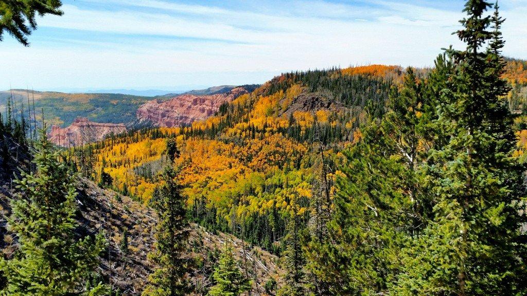 Cedar Mountain Fall Colors