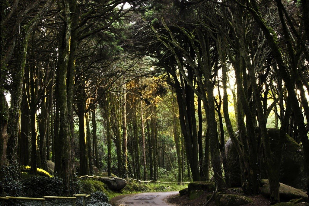 Pena Park portugal