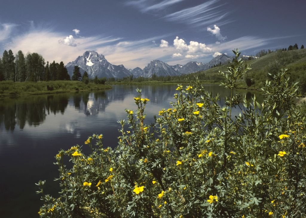 Oxbow Bend outlook in the Grand Teton National Park- Photo by Michael Gäbler - CC BY 3.0 commons