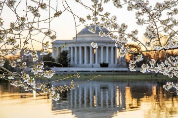 Tidal Basin at Washington DC - Photo by Abhijeet Karle via Flickr