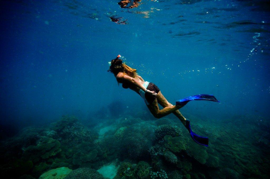 Chumbe Island Reef