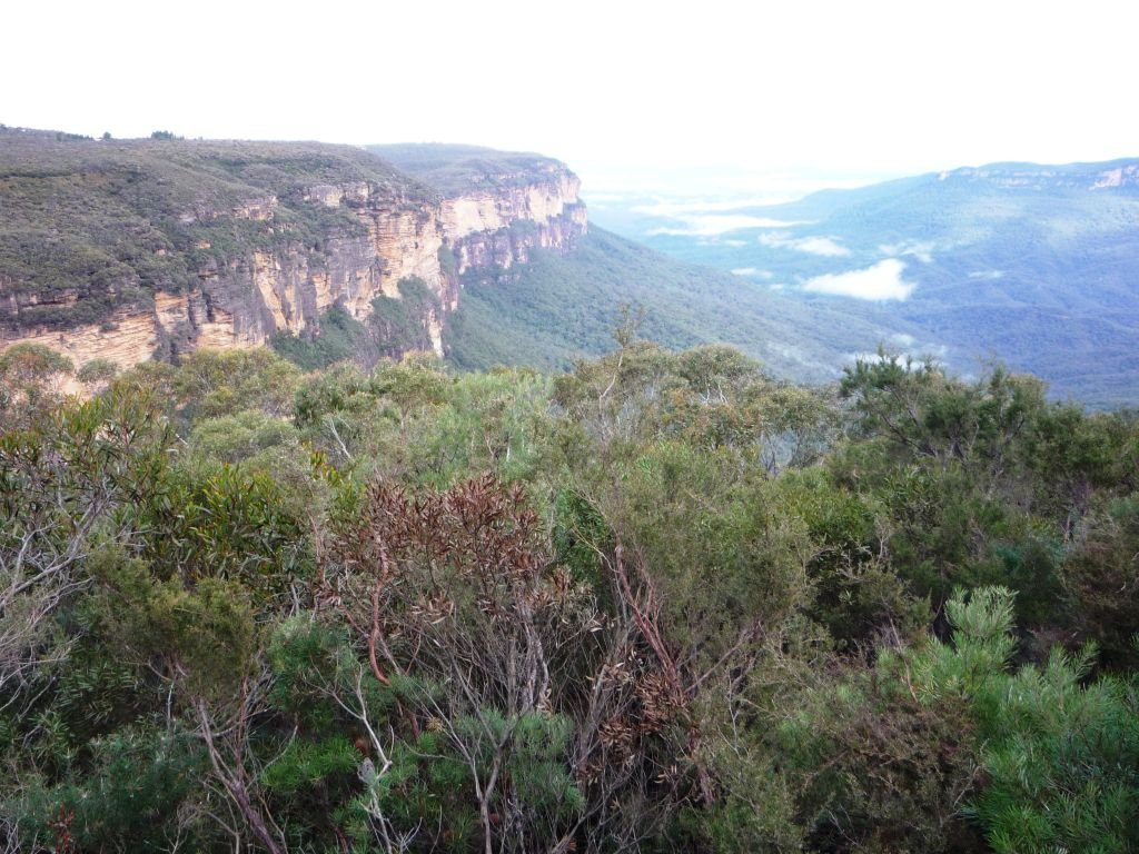 Australia-Blue Mountains - 1024 x 768