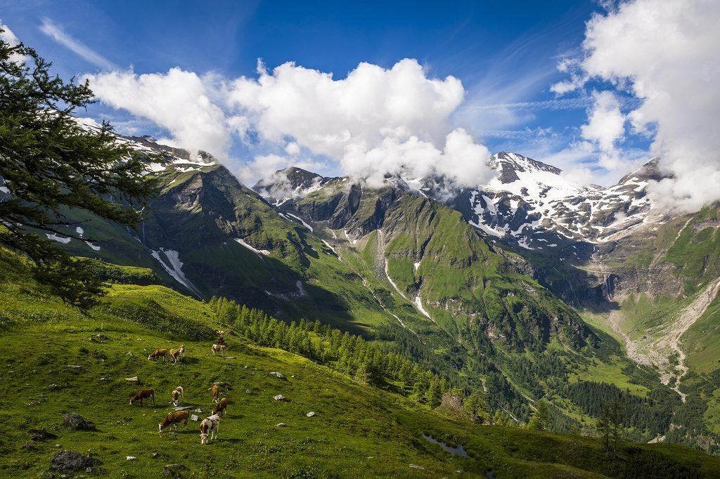 The Grossglockner High Alpine Road. © Österreich Werbung, Photographer: Filmspektakel.at