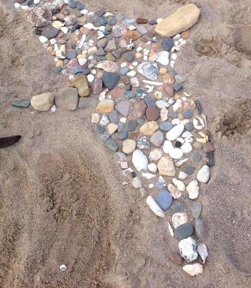 Beach Art Photo: Emily Cunningham