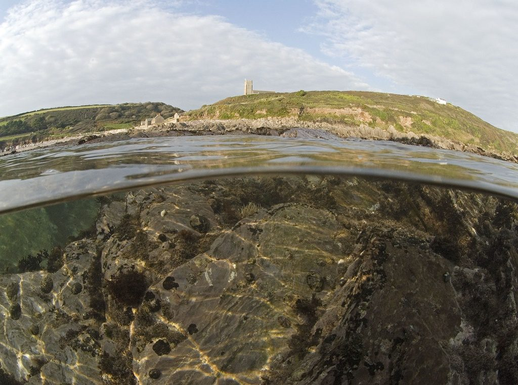 Half half. Photo: Wembury
