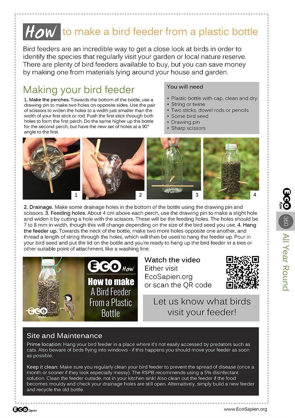 Infographic bird feeder