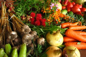Ecologically_grown_vegetables-By Elina Mark-CC BY-SA 3.0 via Wikimedia Commons - 1024 x 768