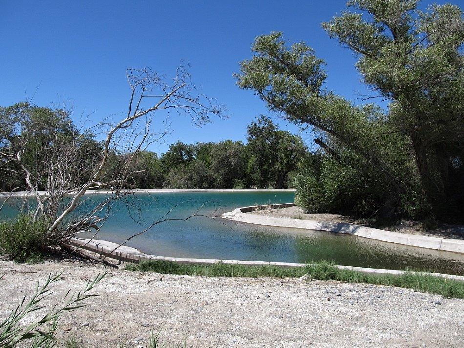 Fish Pond, Desert National Wildlife Refuge, Near Las Vegas, Nevada