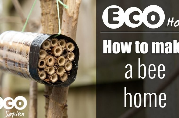 how to make a bee home