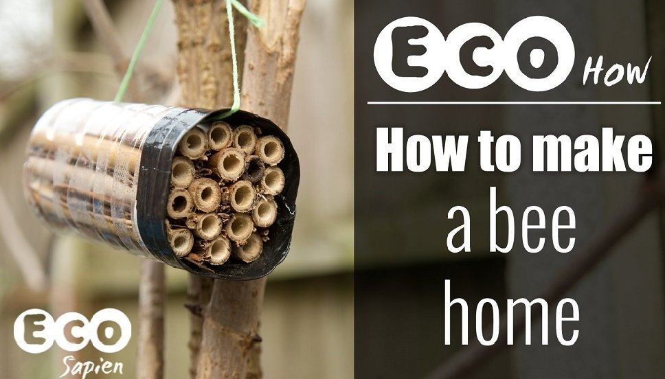 Eco How: How to Make a Bee Home - Ecophiles