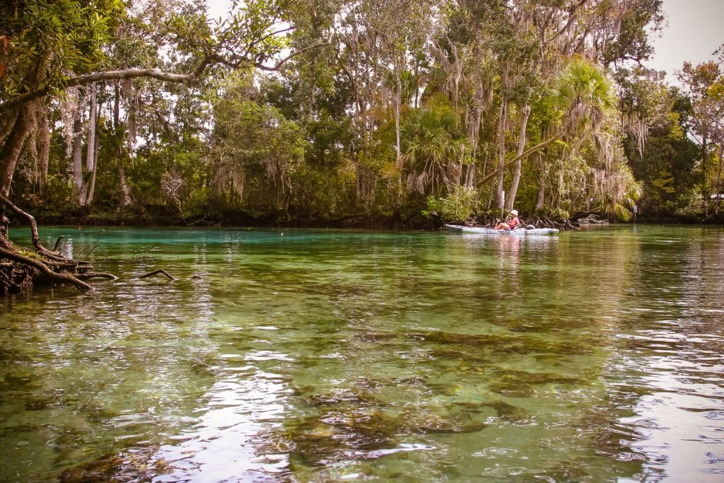 Kayaking in Three Sisters Springs