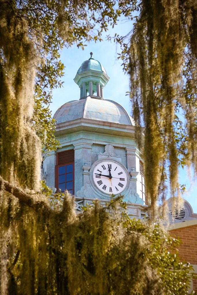 The Clock Tower at the Inverness Courthouse peeks through spanish moss