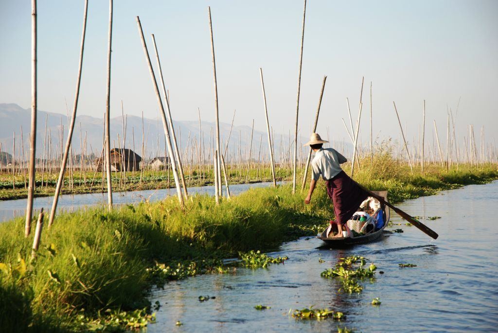 Myanmar-Inle_Lake_Burma_floating_gardens
