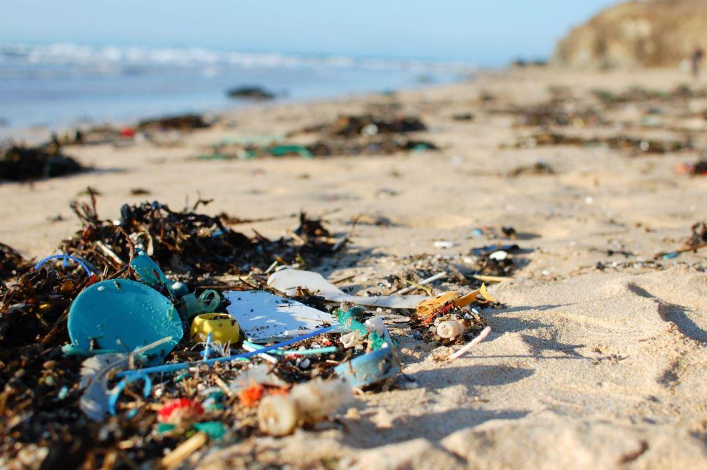 beach-trash