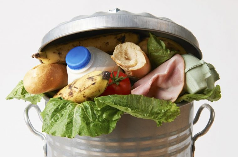 1.3 bn Tonnes of Food Binned Each Year: How YOU can Stop Food Waste