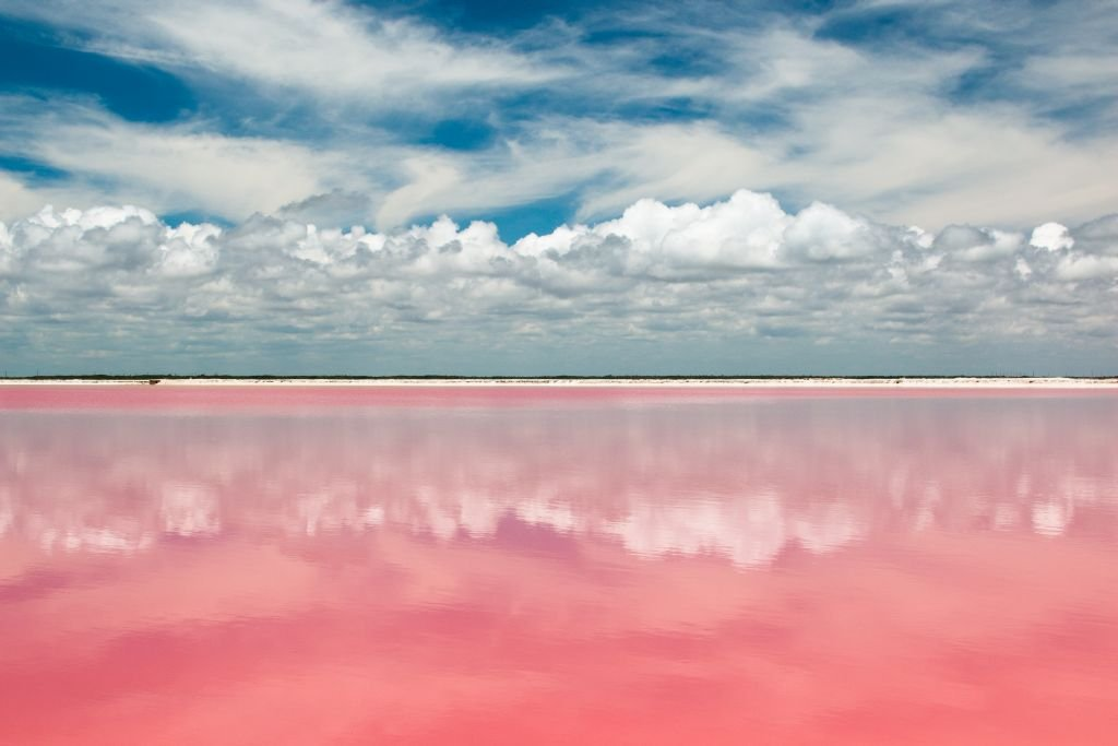 Pink lagoon lake at las Coloradas, Mexico