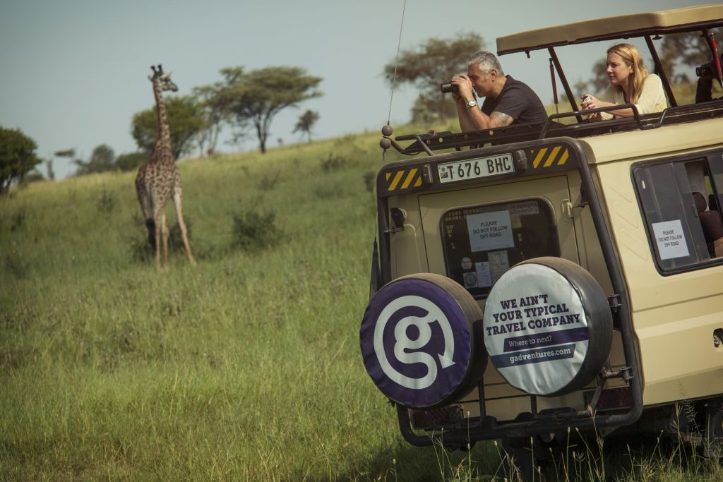 tanzania-serengeti-safari-jeep-travellers-giraffe