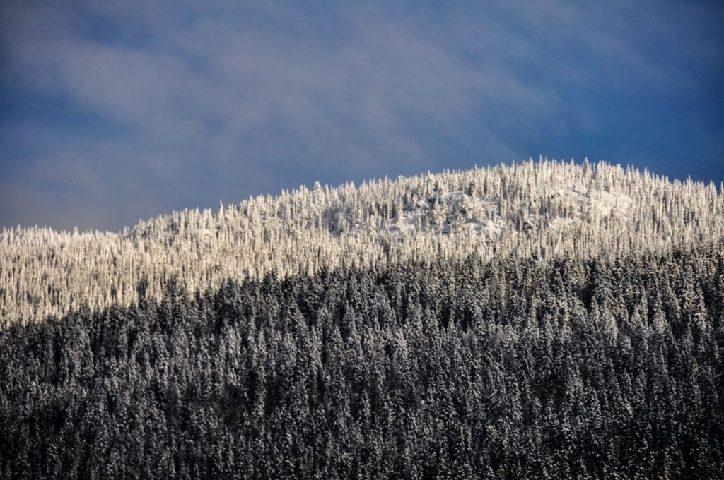 Canada mountains: Winter wonderland through the lens. The Rockies in winter
