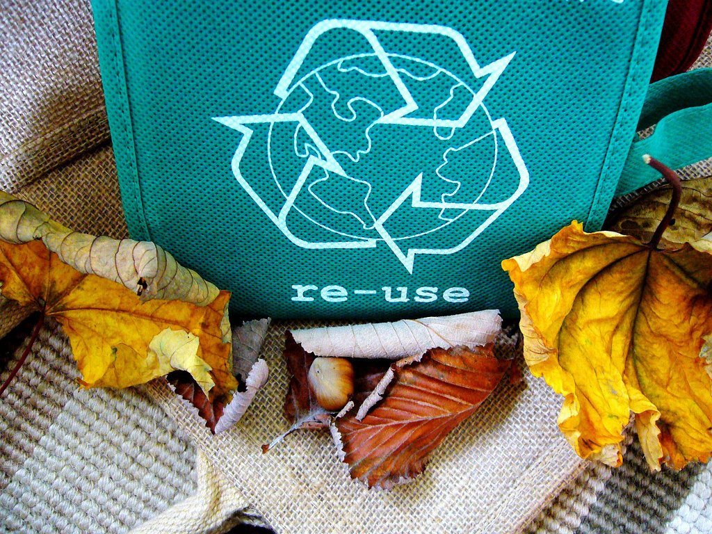 recycling simple changes for a greener life