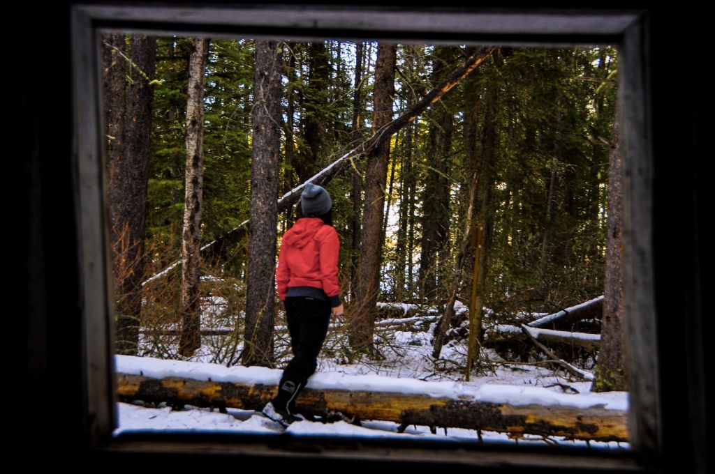Canada Lake Johnson abandoned cabin