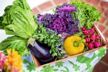 meat-free diet garden-vegetables vegan