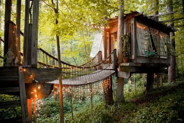 tree house tiny houses air bnb