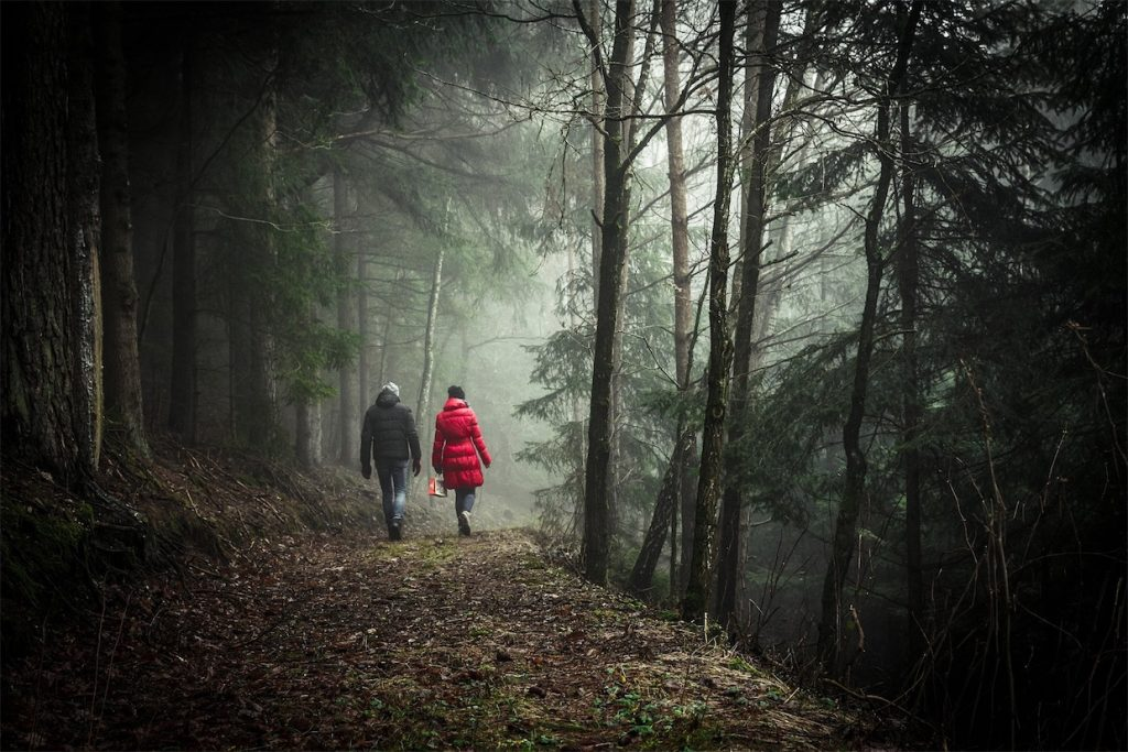 couple walking in the forest on a date