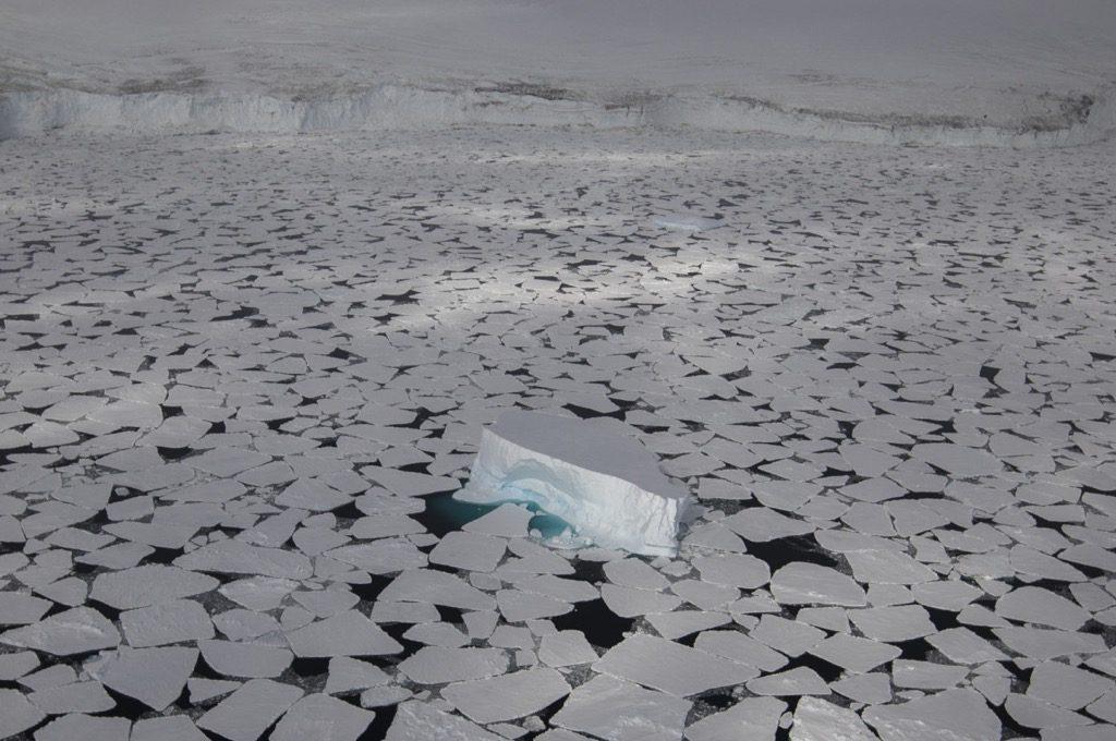 Scott Portelli Skypixel Antartica nature drone