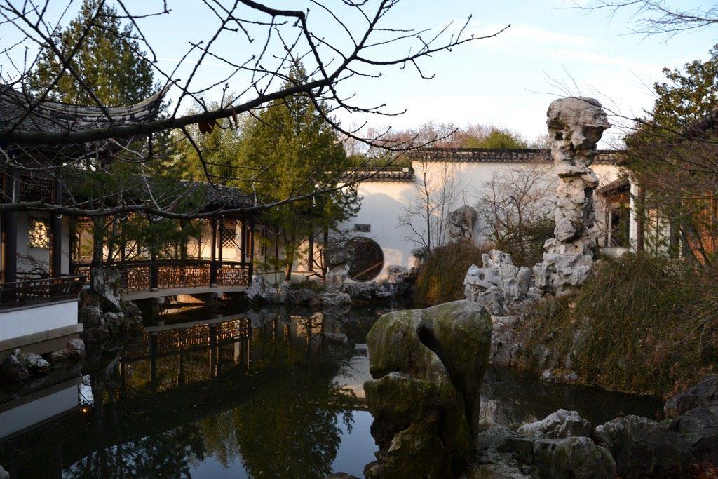 new york chinese scholars garden
