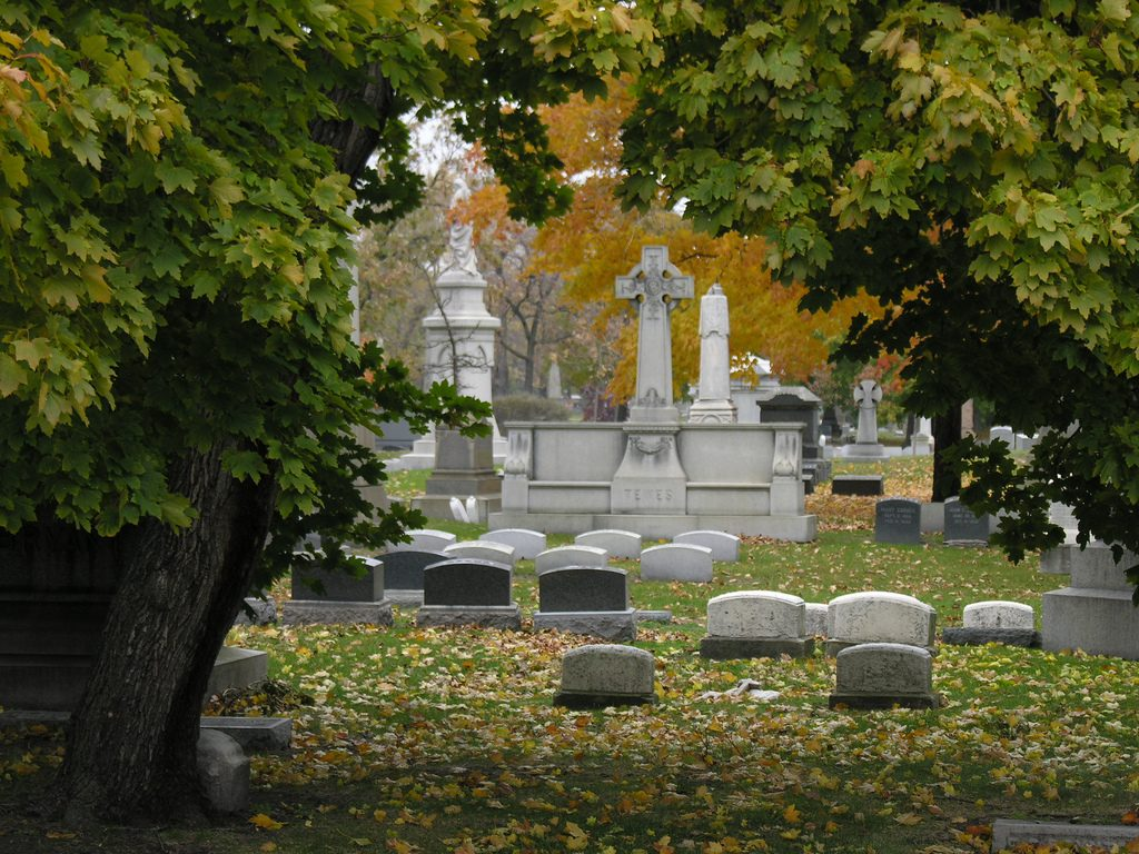 Graceland Cemetery Chicago cemeteries