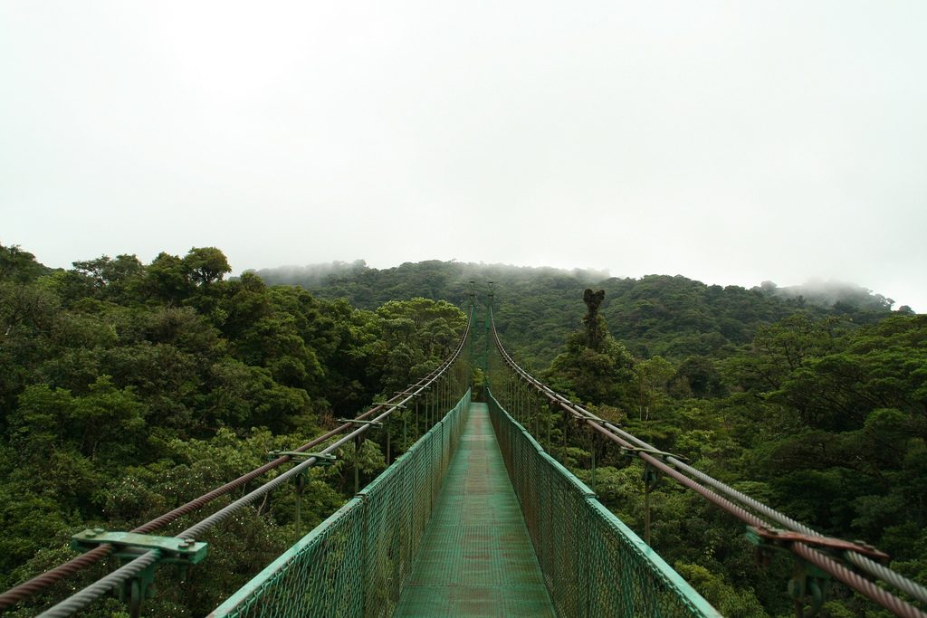 Skywalk Monteverde Costa Rica Canopy Walks