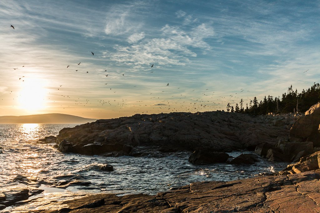 National Parks Acadia National Park -Schoodic Point