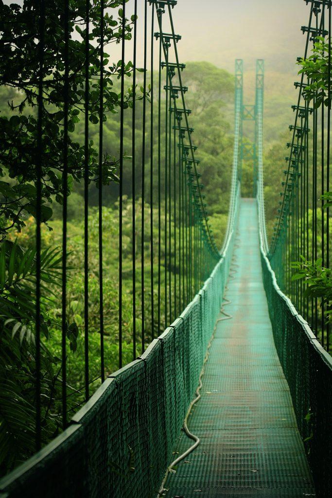 Skywalk Monteverde Costa Rica Canopy Walkway