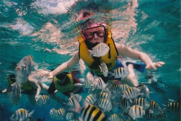 best Snorkeling locations