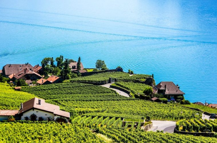 10 Heady Destinations for Wine Tours Around the World