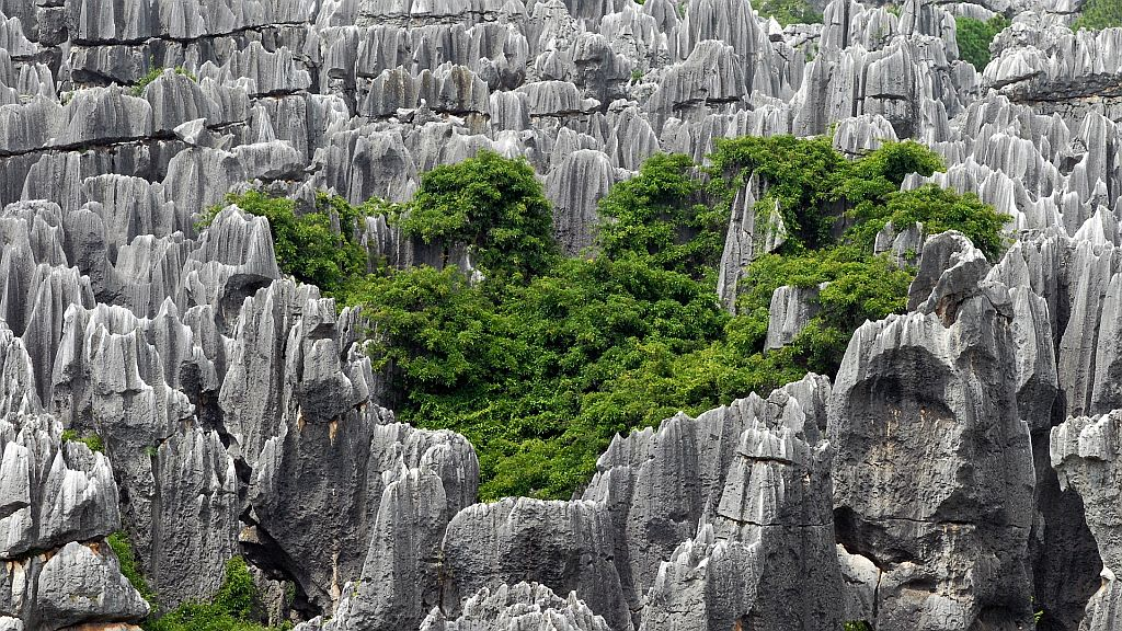 China Landscapes